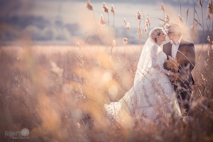 Photograph Wedding by Evgeny Lanin on 500px
