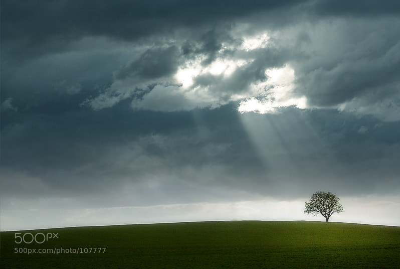 Photograph a day without rain by Tobias Zeising on 500px