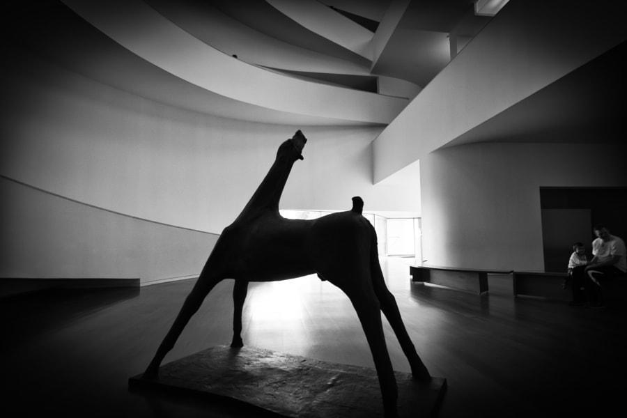 Grande Cavallo I