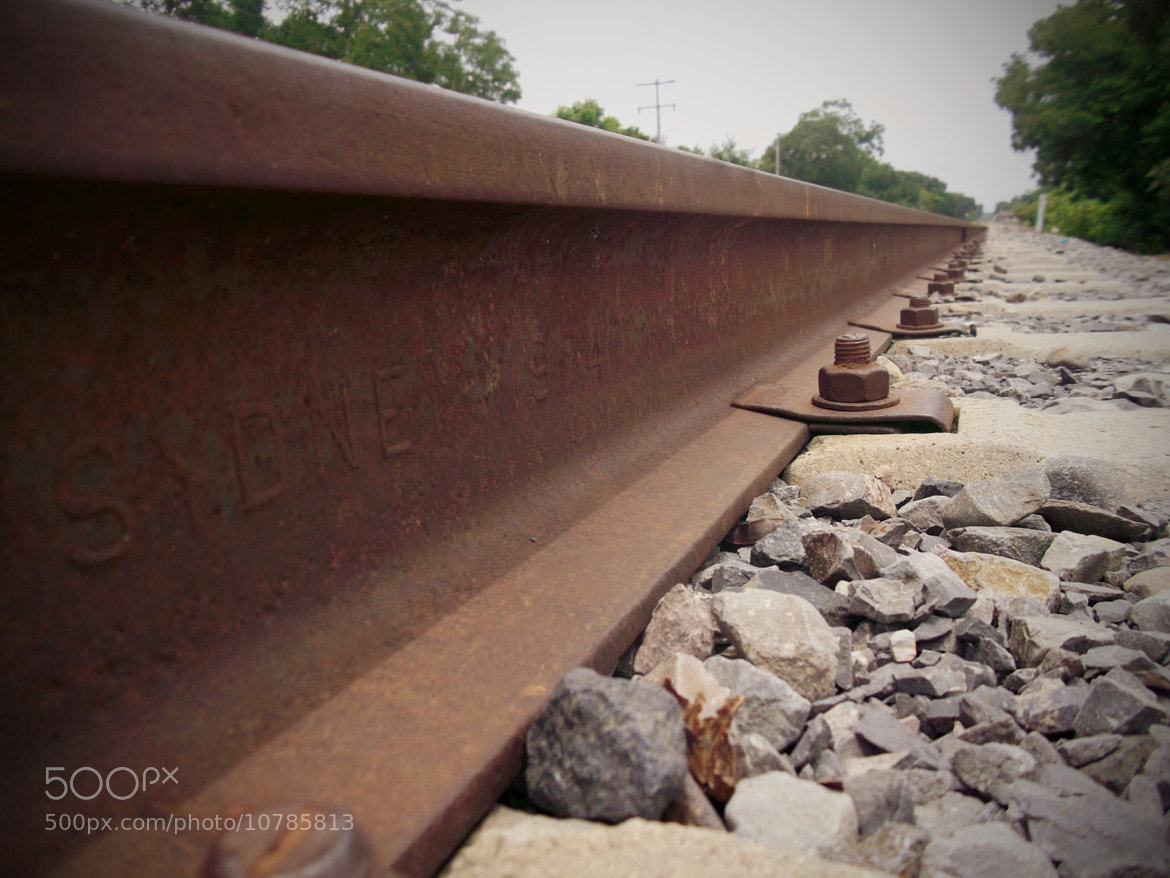 Photograph Railroad by Alf Baptist on 500px