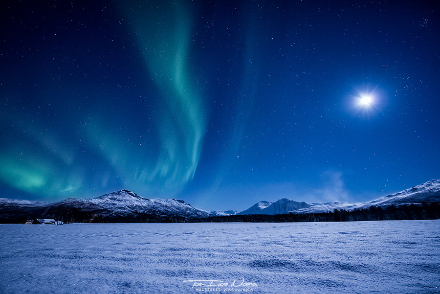 Moonlight Sonata by Tor-Ivar Næss on 500px.com