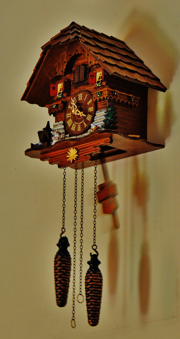 Photograph Cuckoo clock from Drubba, Titisee, Germany. by Ravi S R on 500px