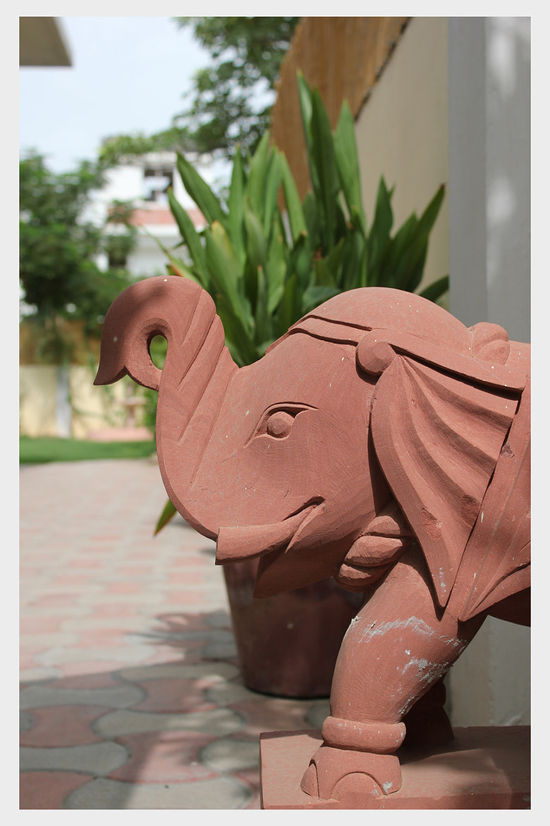 Photograph Elephant statue by Yashovardhan Sodhani on 500px