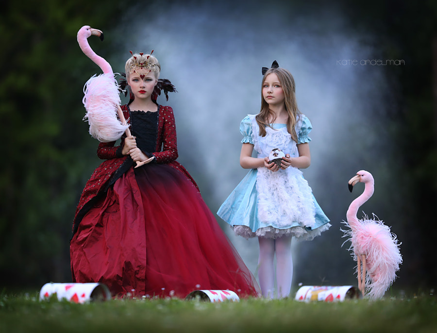 Flamingo Social by Katie Andelman Garner on 500px.com