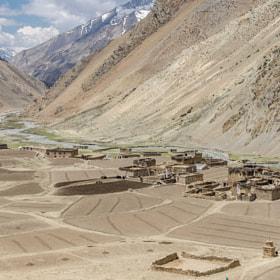 Spring; Dho at 4000m (Nepal) by Elizabeth Anisclo (Bep van Pelt)