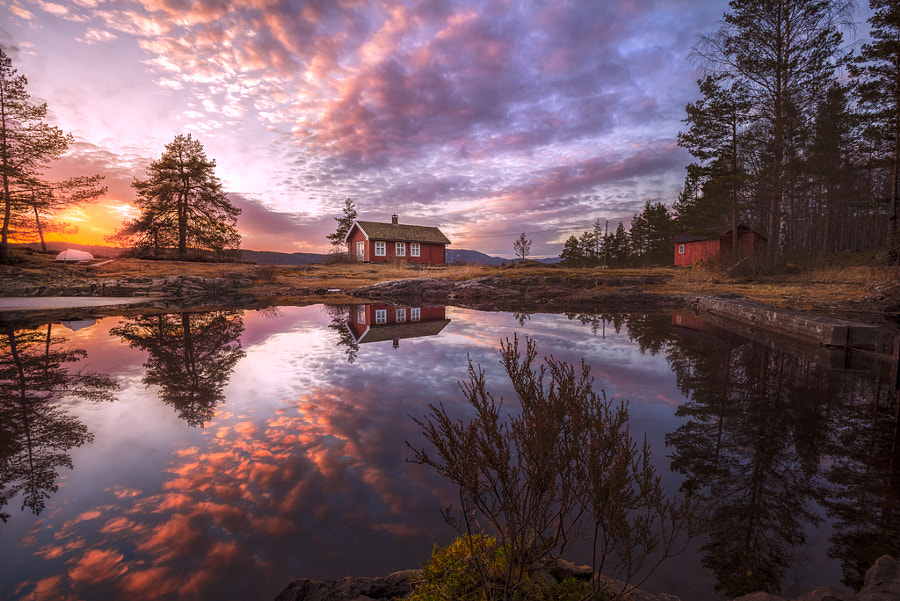 Photograph Balm for the Soul III by Ole Henrik Skjelstad on 500px