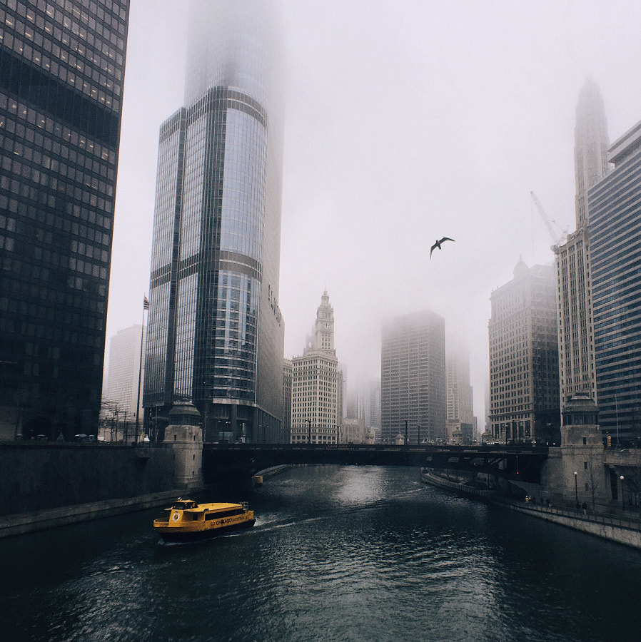 Photograph Chasing fog by Cocu Liu on 500px