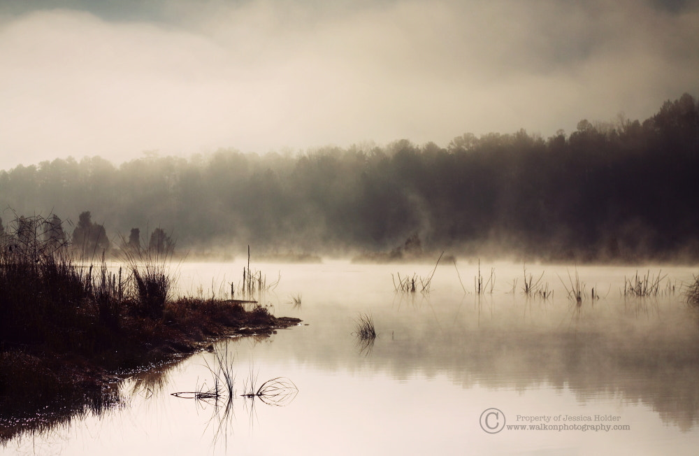 Photograph Quietude by Jessica Holder on 500px