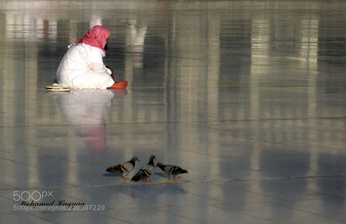 Photograph MAKKA66 by Mohamed  Haggag on 500px