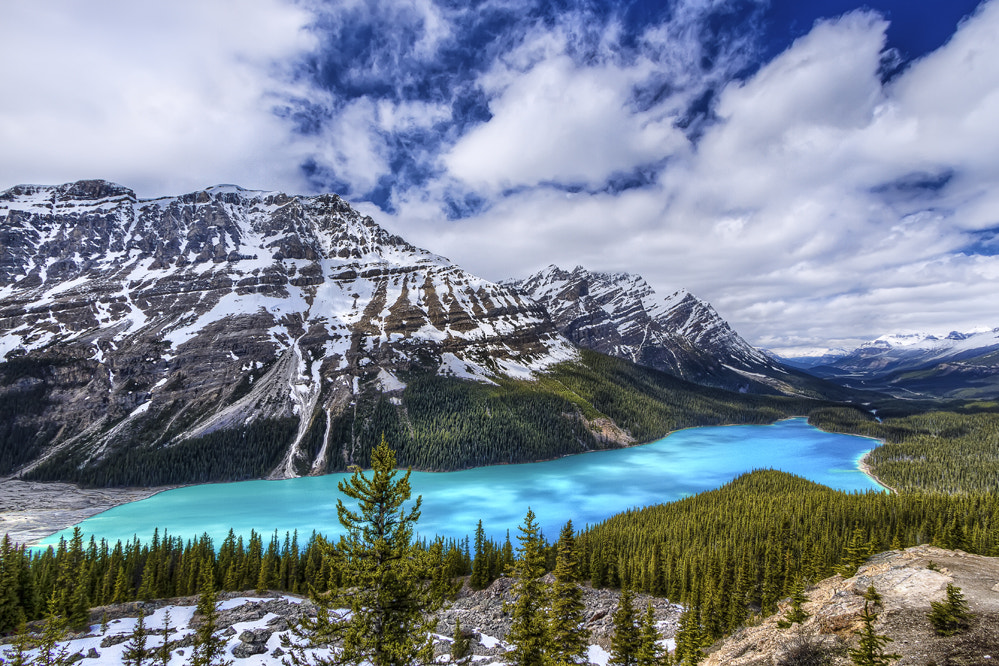 Photograph Peyto Lake - Banff National Park  by Philippe Brantschen on 500px