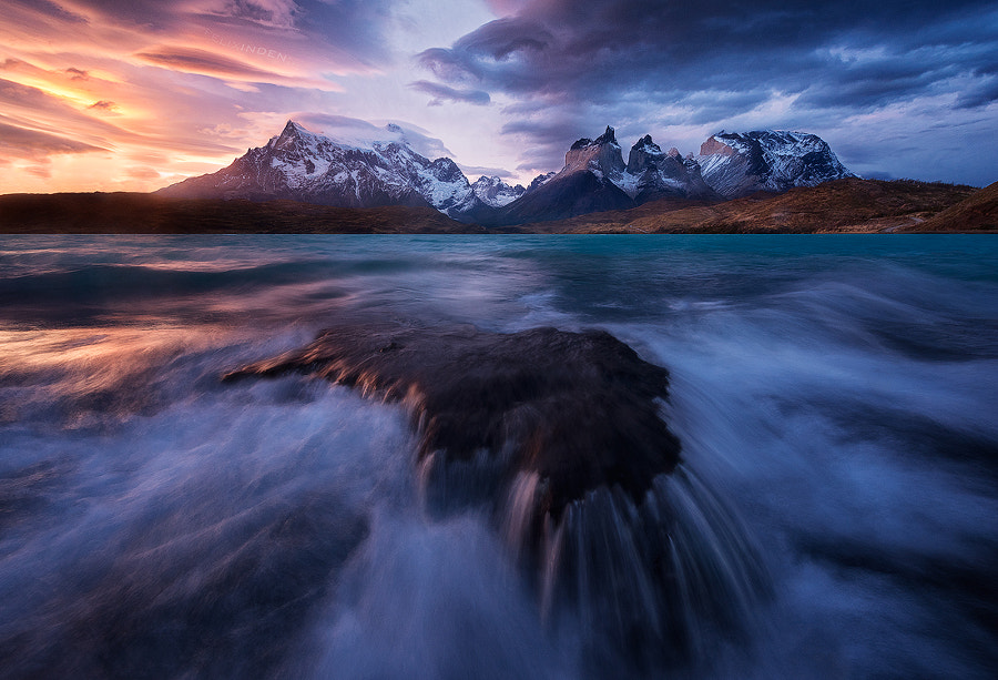 Photograph Mesmerized by Felix Inden on 500px