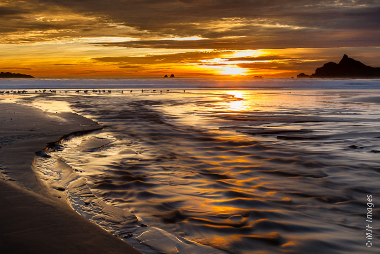 Photograph South Coast Sunset by Michael Flaherty on 500px