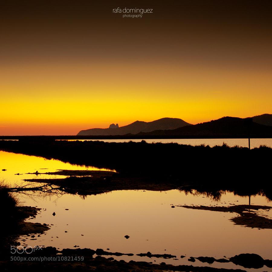Photograph gold feeling by Rafa Dominguez on 500px