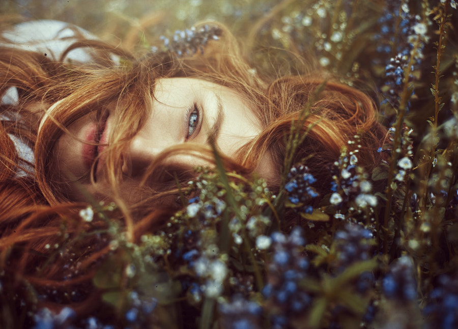 Daydream by Nina Masic on 500px.com
