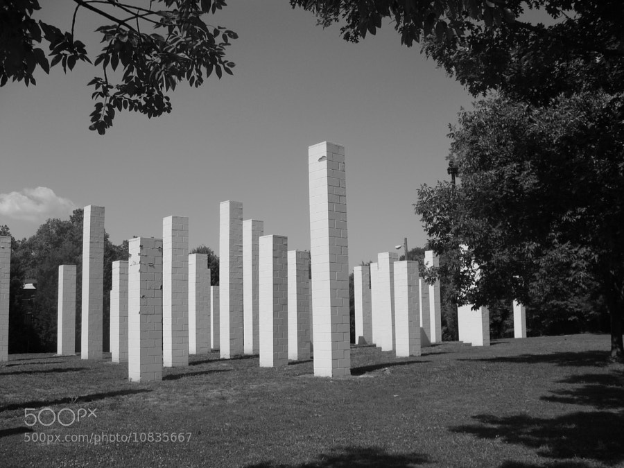 Photograph 54 Columns by Jean-Claude Guilbaud on 500px