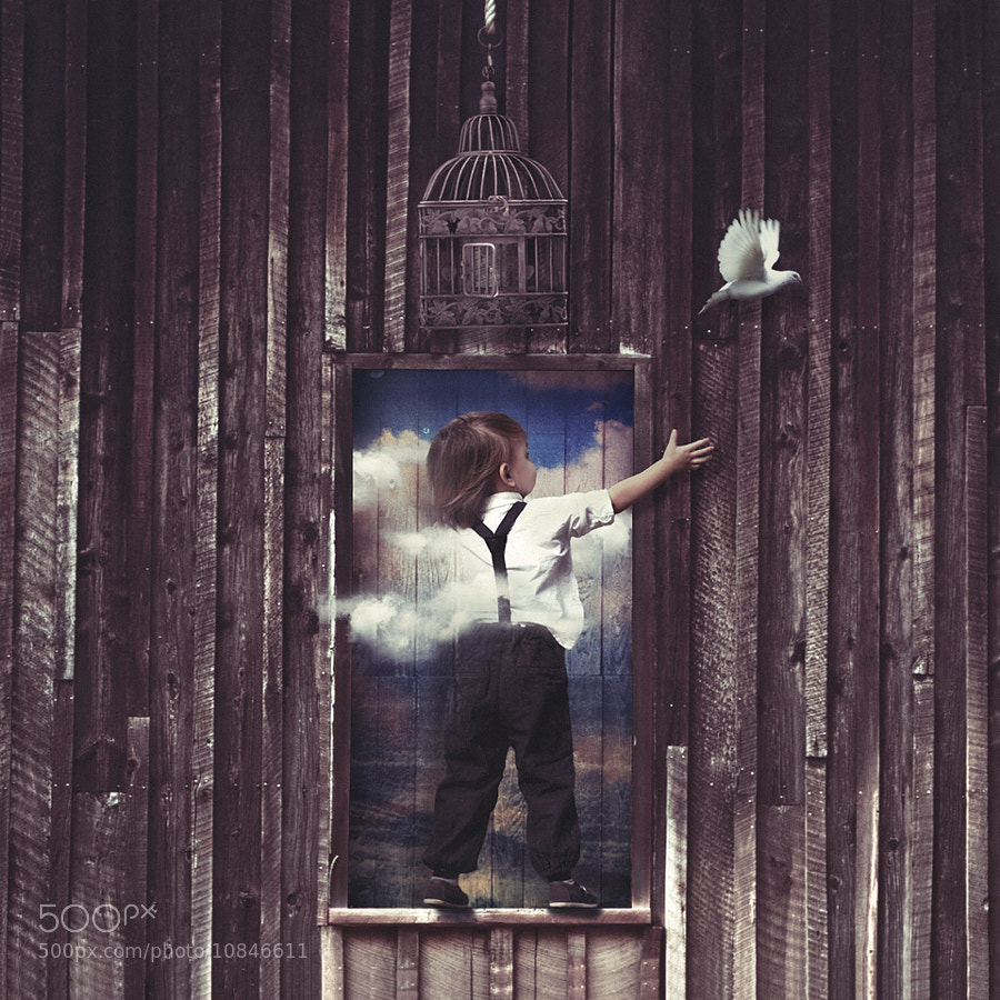Photograph Some dreams aren't meant to be caged by Conor Keller on 500px