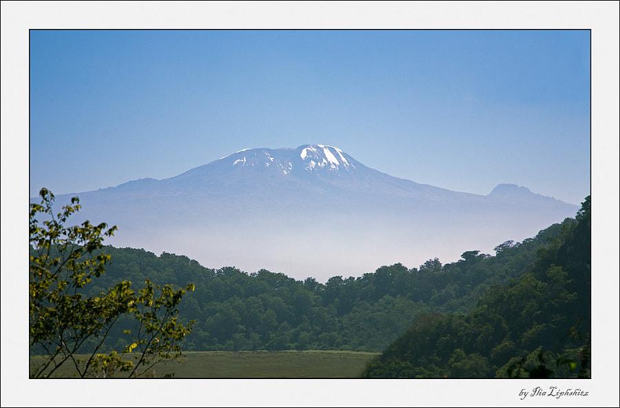 Kilimanjaro #2