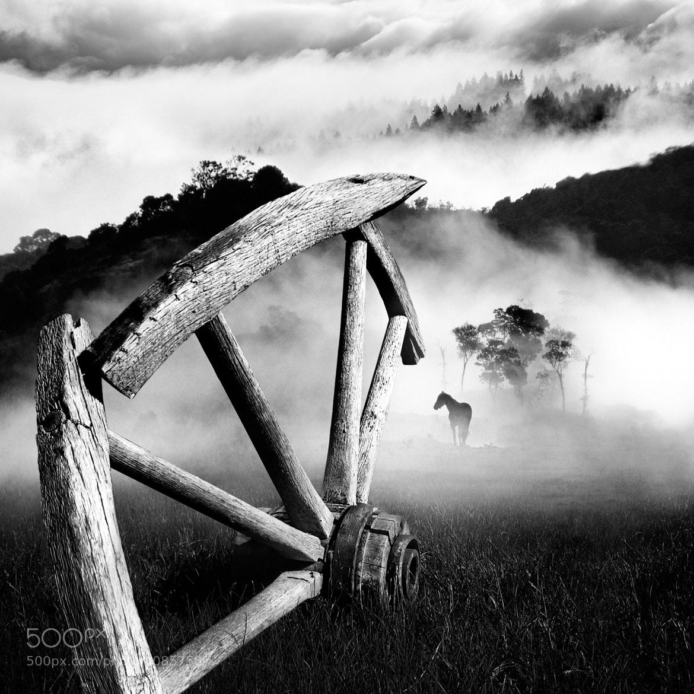 Photograph Ajde Jano! by Dragan Todorović on 500px