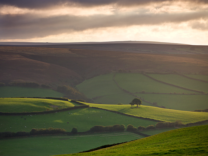 Photograph An Exmoor View by Adam Burton on 500px
