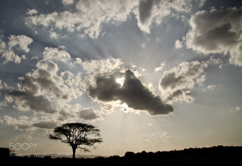 Photograph Nairobi Sky by Audrey B. on 500px
