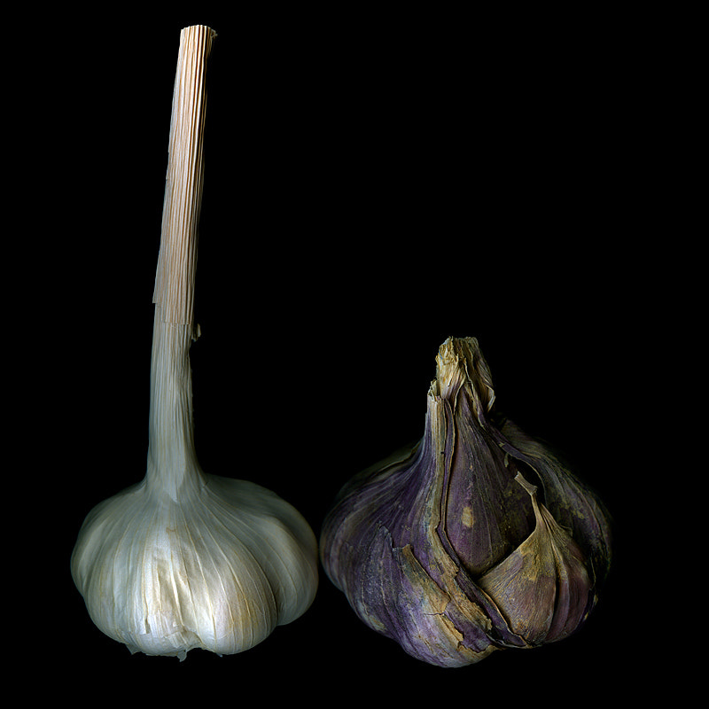 Photograph  THE LAUREL AND HARDY of GARLIC... by Magda Indigo on 500px
