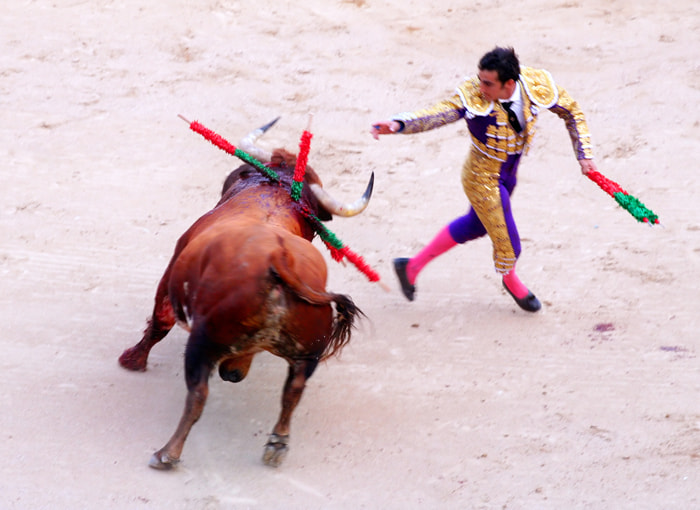 Photograph bull fight by Rami  on 500px