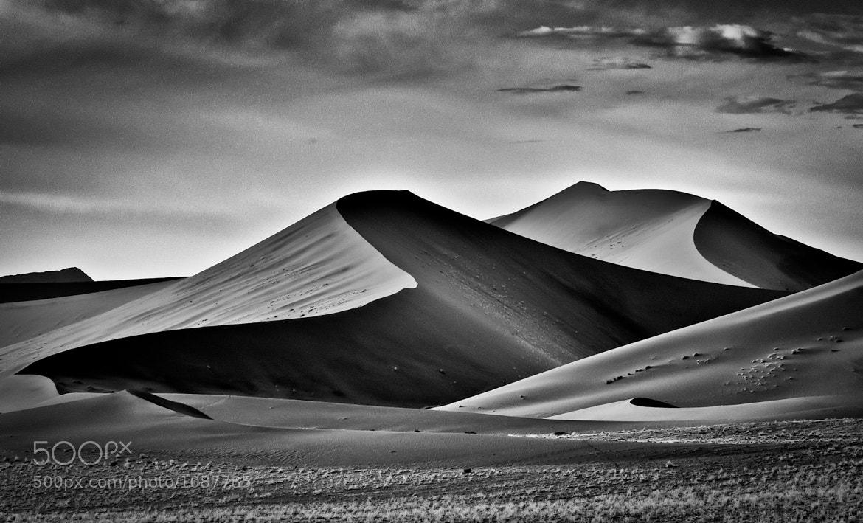 Photograph Dunes by Gorazd Golob on 500px