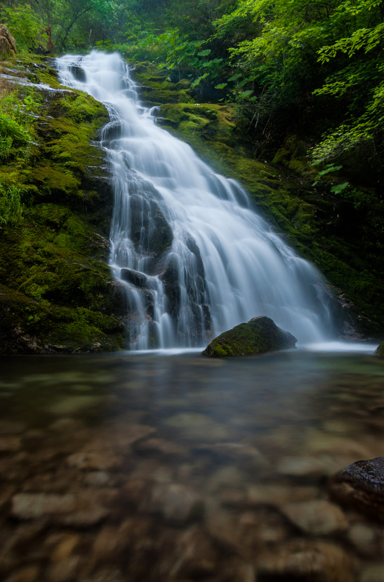 Photograph Whiskeytown Falls (Sure Foot) by Eric Leslie on 500px