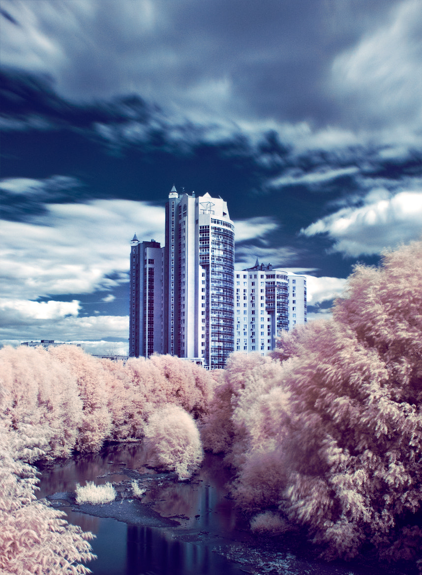 Photograph Infrared by Toma Ryabinina on 500px