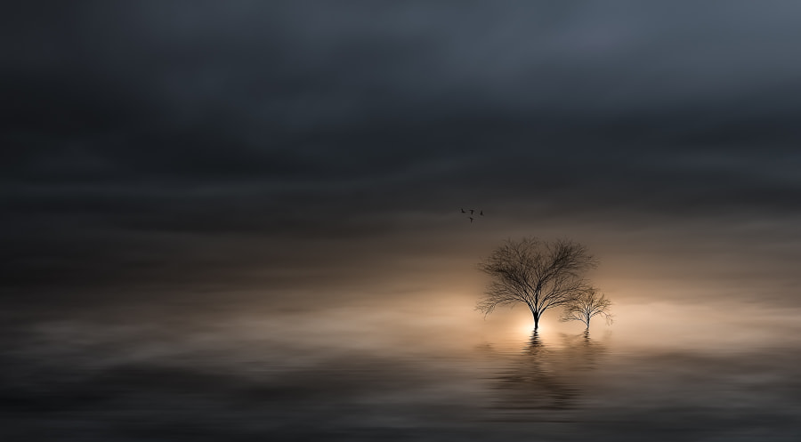Photograph ~UNEARTHLY~ by Christian Wig on 500px