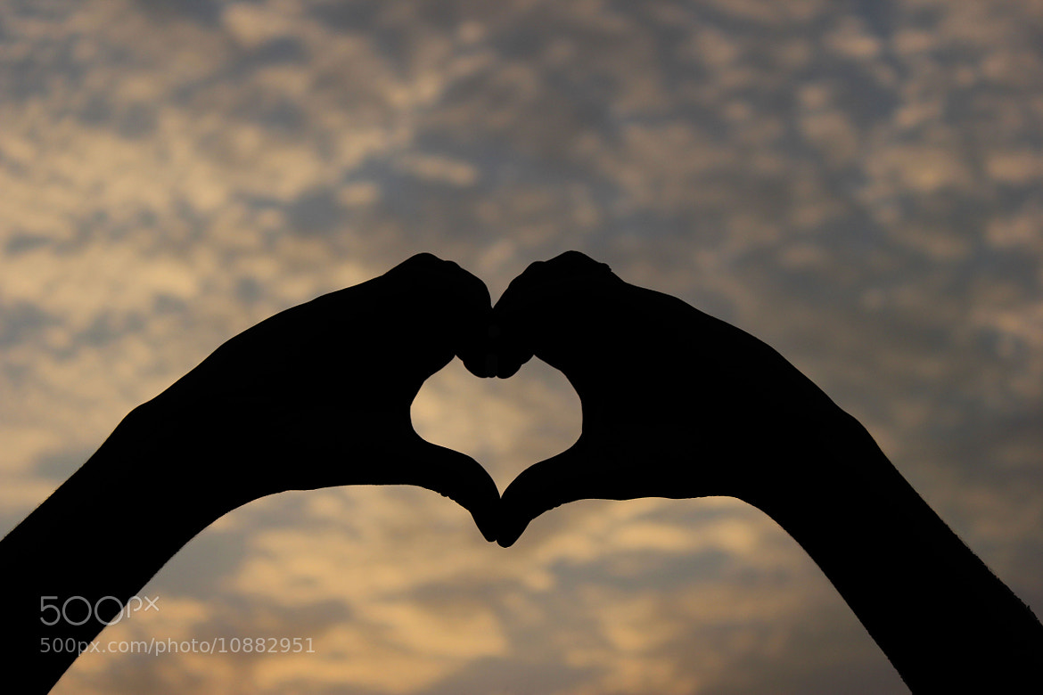 Photograph Heart by SULTAN Al-Harthy on 500px