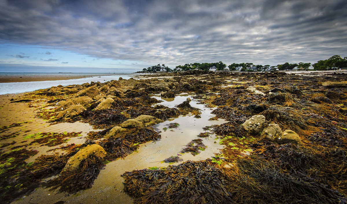 Photograph Carnac plage by Rudy Denoyette on 500px