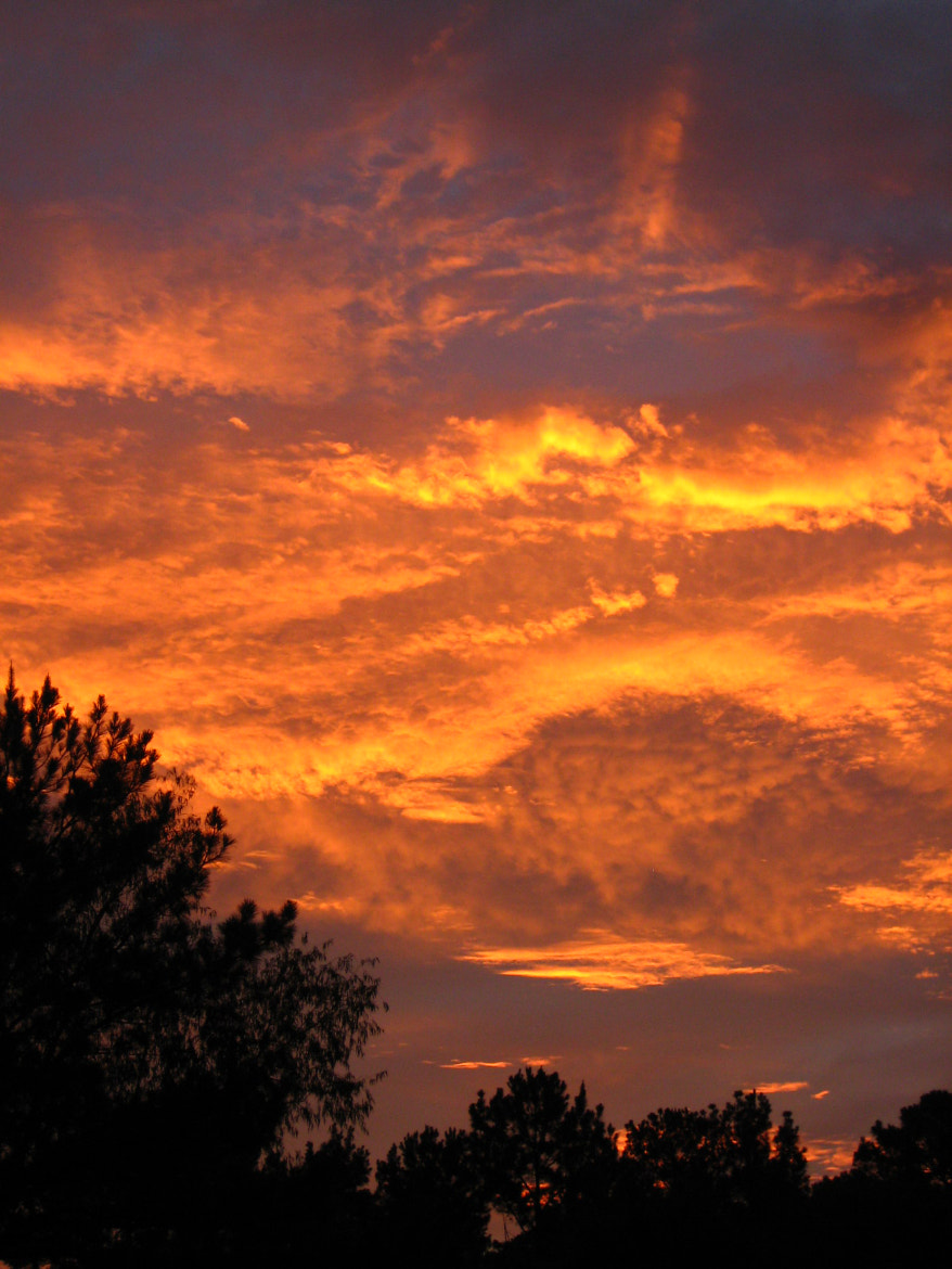 Photograph Fire in the sky by Mona Jones on 500px