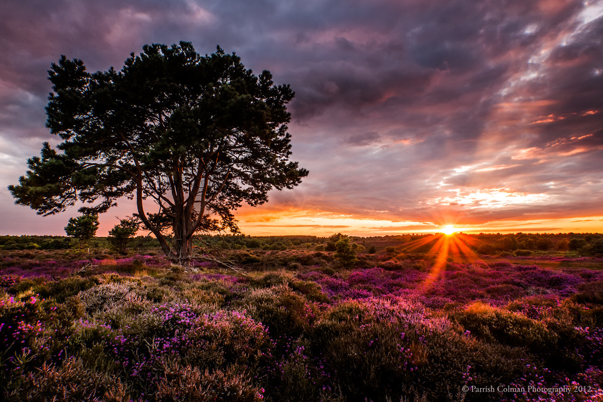 Photograph The Bells Of Dunwich by Parrish Colman on 500px