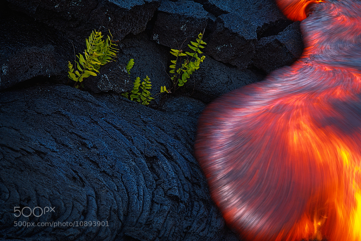 Photograph Temporary Solitude by Bruce Omori on 500px