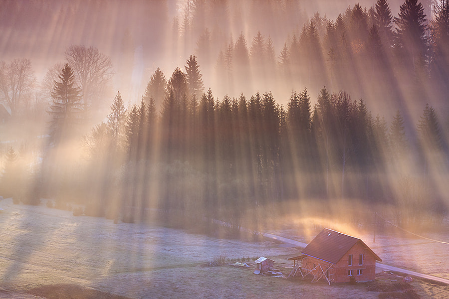 Photograph Construction in rays by Marcin Sobas on 500px