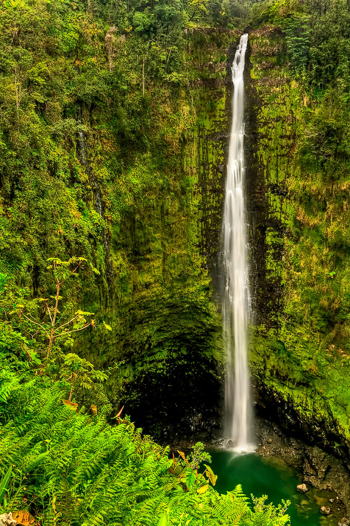 Photograph Akaka Falls by Richard Ikerd on 500px