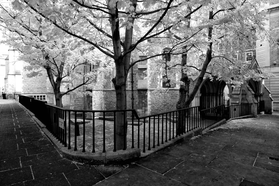 Temple Church Infrared