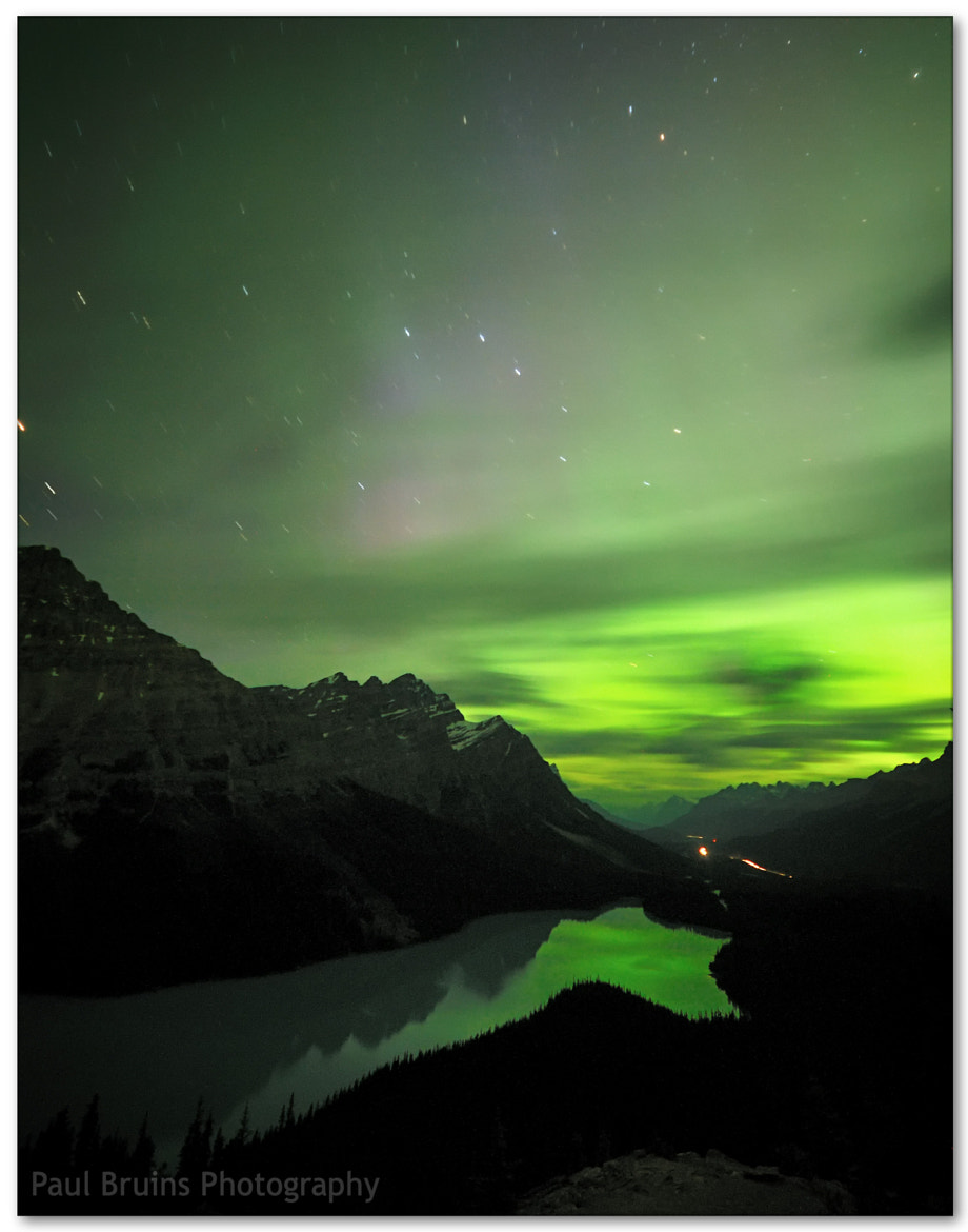 Photograph Northern Lights over Peyto Lake by Paul Bruins on 500px
