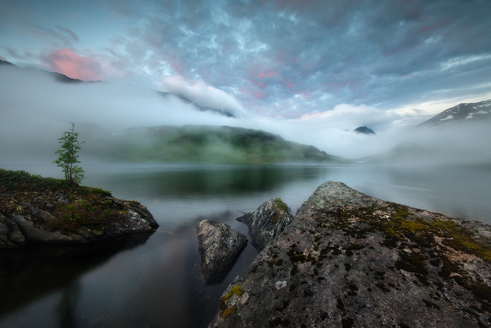 Photograph Mountain Mist by Arild Heitmann on 500px