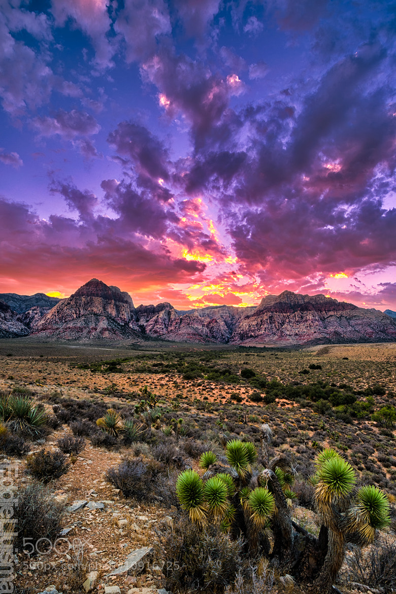 Photograph Red Rock Canyon by Eddie Lluisma on 500px