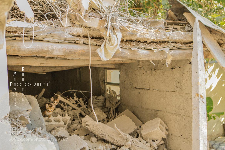 Photograph Found A HOUSE !! by Mahmoud Khateeb on 500px