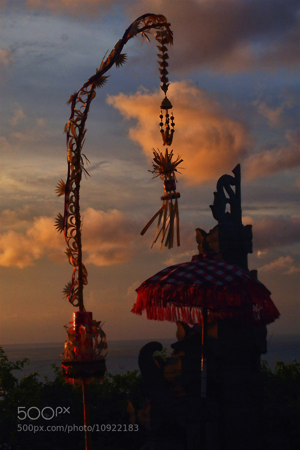 "Photograph I call it ""Janur kuning"" by Prabu dennaga on 500px"