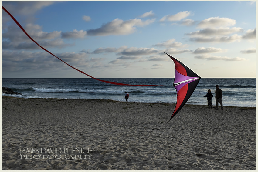 Fighting Kite