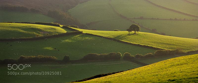 Photograph Greens of Exmoor by Adam Burton on 500px