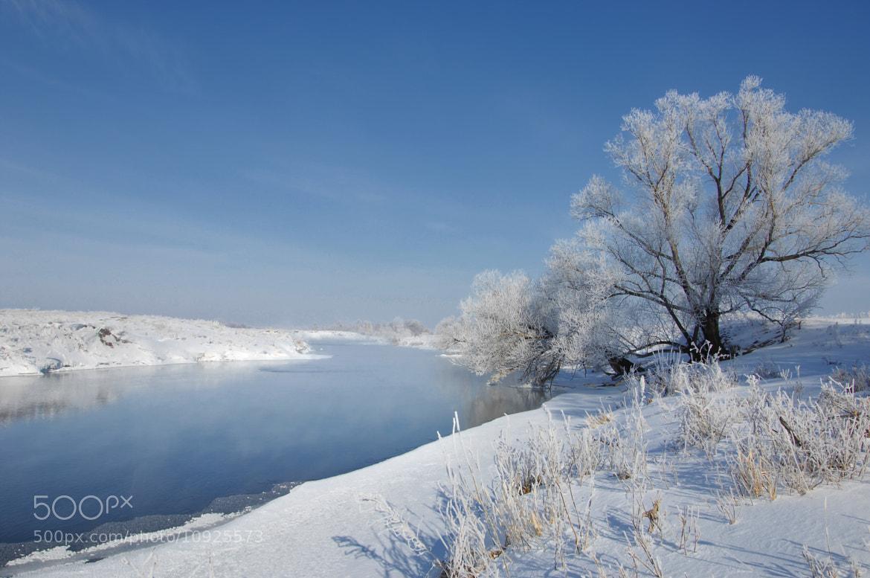 Photograph winter by Aleksandr Prokopenko on 500px