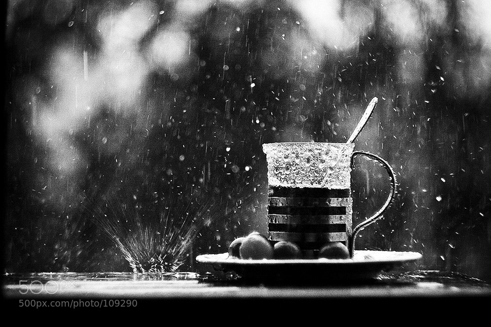 Photograph Wet breakfast by Andy Martin on 500px