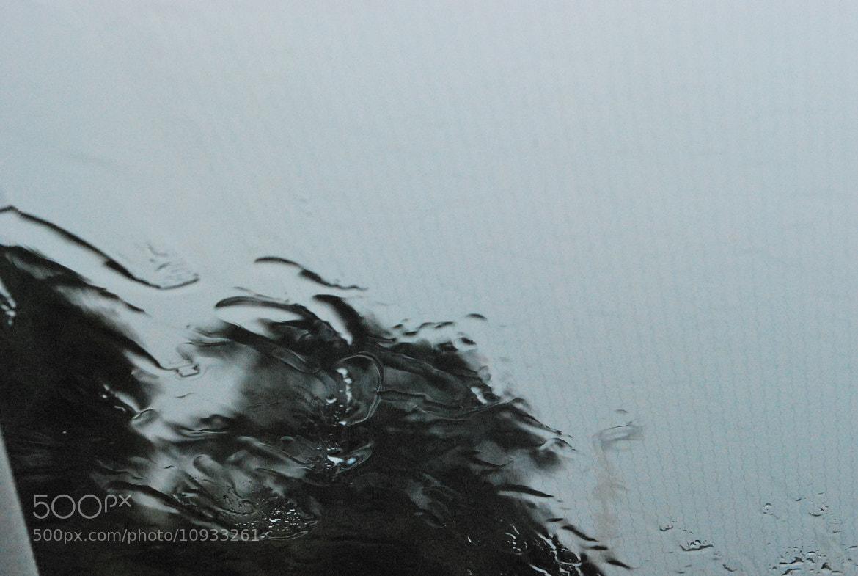 Photograph Rainy by Jose M. Morlesín on 500px