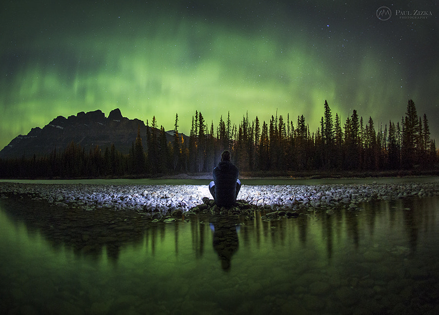 Springtime Spectacle by Paul Zizka on 500px.com