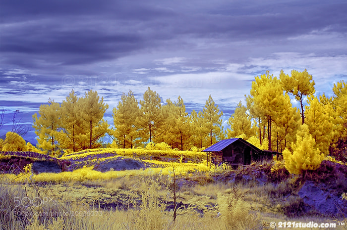 Photograph COUNTRY HOME (Infrared) by Ali Shamsul Bahar on 500px